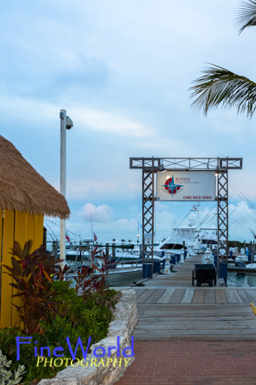 Bimini Guy Harvey Outpost
