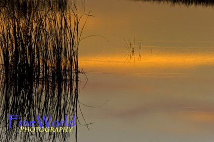 Everglades, Reflections at Sundown