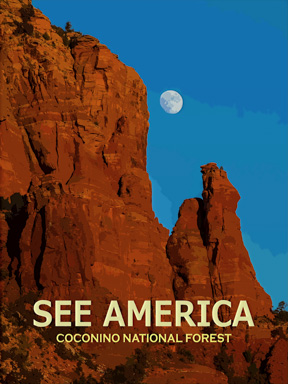 See America - Coconino National Forest